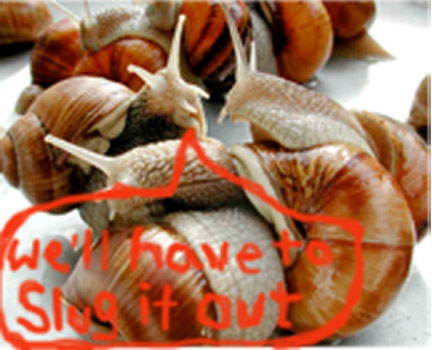"""Two snails, one is saying to the other """"We'll have to slug it out"""""""
